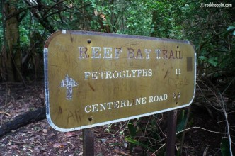 reef-bay-trail-hike-stjohn-petroglyphs