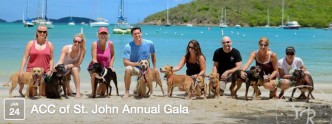 acc-of-ststjohn-annual-gala